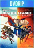 Liga de La Justicia Crisis En Dos Tierras (2010) DVDRip Español Latino