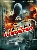Desastre Aereo DVDRip Español Latino