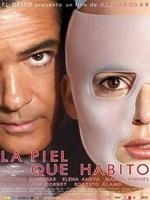 La Piel Que Habito 2011 DVDRip Español Castellano