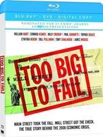 Portada de Too Big to Fail 720p HD Español Latino Dual BRRip Descargar