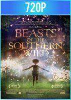 Bestias del Sur Salvaje (2012) BRRip HD 720p Latino Dual