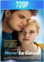 Now Is Good (2012) BRRip HD 720p Latino