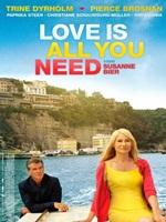 Amor es todo lo que Necesitas DVDRip Español Latino