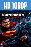 Superman Unbound 1080p HD Latino Dual