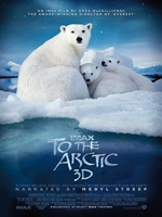 To the Arctic 3D DVDRip Español Latino
