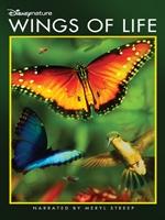 Portada de Wings of Life DVDR NTSC Español latino