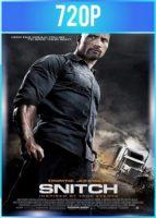 Snitch [El infiltrado] (2013) HD 720p Latino Dual