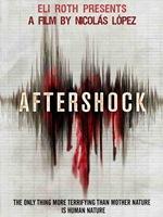 Aftershock DVDRip Subtitulos Español Latino