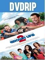 Grown Ups 2 DVDRip Latino