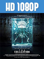 The Collection 1080p HD Latino Dual