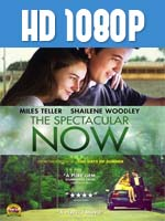 The Spectacular Now 1080p HD Latino Dual