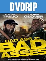 Un Tipo Rudo 2 DVDRip Latino