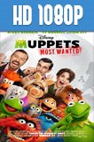 Muppets Most Wanted 1080p HD Latino