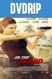 In the Blood DVDRip Latino