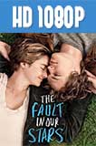 The Fault in Our Stars 1080p HD Latino