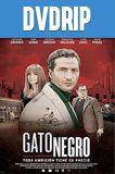 Gato Negro DVDRip Latino