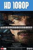 Predestinación 1080p HD Latino