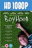 Boyhood 1080p Latino