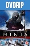 Ninja 2 La Sombra de la Muerte DVDRip Latino