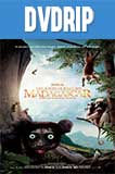 Island of Lemurs: Madagascar DVDRip Latino