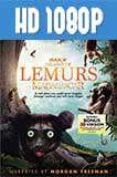 Island of Lemurs: Madagascar 1080p Latino