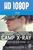 Camp X-Ray 1080p Latino