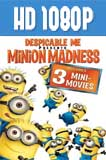 Minions Mini Movies HD 1080p Latino