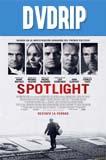 Spotlight (2015) DVDRip Latino