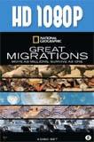 Grandes Migraciones (2010) HD 1080p Latino