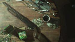 Portada de ESRB da detalles de Resident Evil 7. Argumento y armas al descubierto