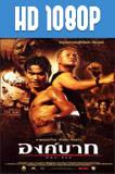 Ong-Bak: El Nuevo Dragón (2003) HD 1080p Latino