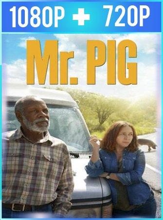 Sr. Pig (2016) HD 1080p y 720p Latino