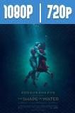 La Forma del Agua (2017) HD 1080p y 720p Latino Dual