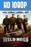 Rebeldes con causa (2007) HD 1080p Latino