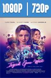 Ingrid Goes West (2017) HD 1080p y 720p Latino