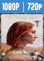 Lady Bird (2017) HD 1080p y 720p Latino