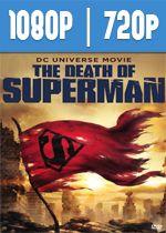 La Muerte De Superman (2018) HD 1080p y 720p Latino