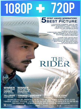 The Rider (2017) HD 1080p y 720p Latino