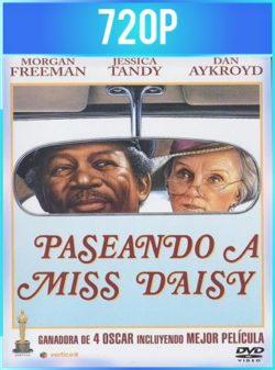 El chofer y la señora Daisy (1989) HD 720p Latino