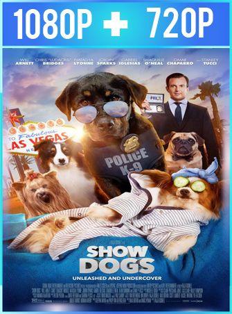 Superagente Canino (2018) HD 1080p y 720p Latino