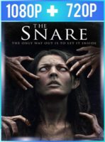 The Snare (2017) HD 1080p y 720p Latino