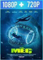 Megalodon (2018) HD 1080p y 720p Latino