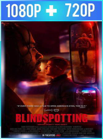 Blindspotting (2018) HD 1080p y 720p Latino