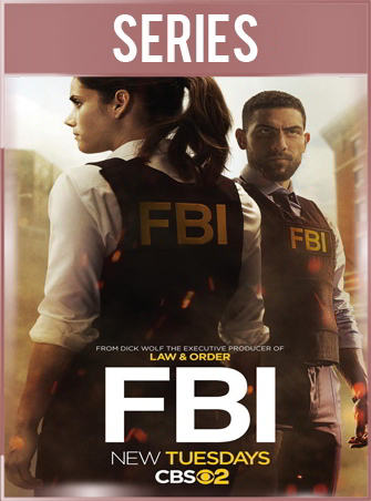 FBI Temporada 1 HD 720p Latino Dual