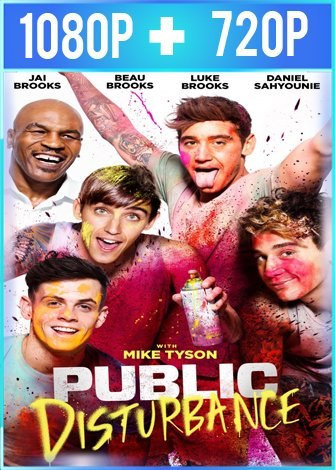 Public Disturbance (2018) HD 1080p y 720p Latino