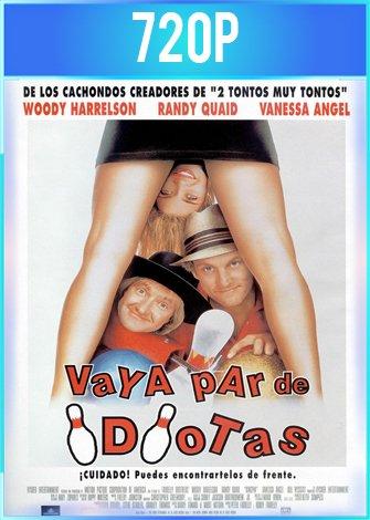 Vaya par de idiotas (1996) HD 720p Latino Dual