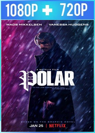 Polar (2019) HD 1080p y 720p Latino Dual