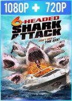 El ataque del tiburón de seis cabezas (2018) HD 1080p y 720p Latino