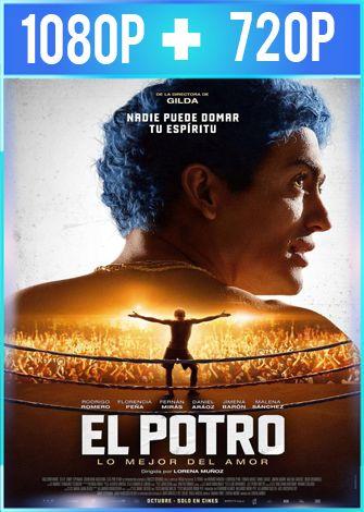 El Potro Lo mejor del amor (2018) HD 1080p y 720p Latino