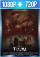 Trauma (2017) HD 1080p y 720p Latino
